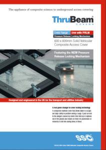 flood brochure cover